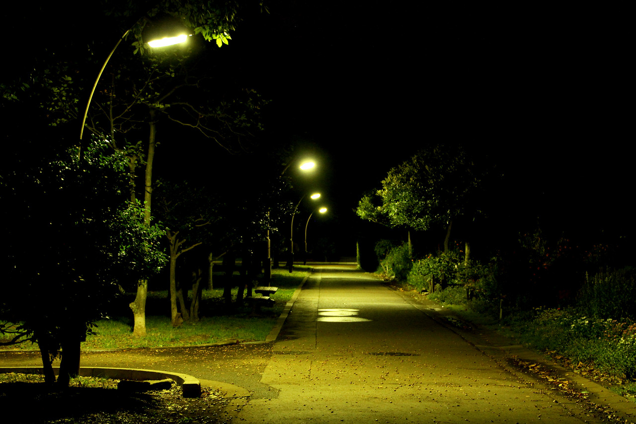 夜の公園をお散歩
